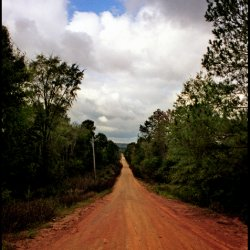 Gee's Bend, Image No. 26, The Road To Paradise