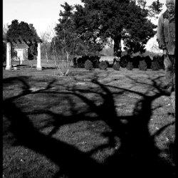 Plantation Diary, Hampton Plantation
