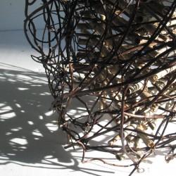 Spin -Detail